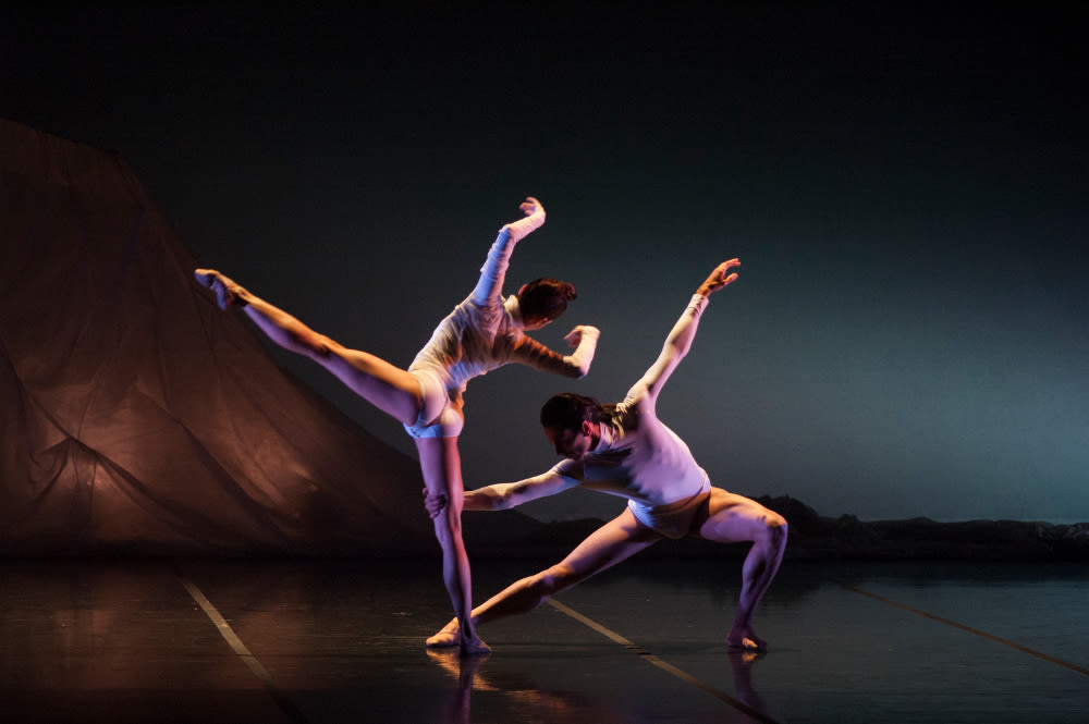 The sarasota ballet in walsh s wolfgang for webb cuabdq