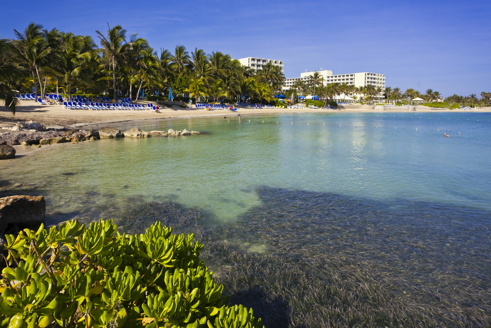 Montego bay  jamaica geanen