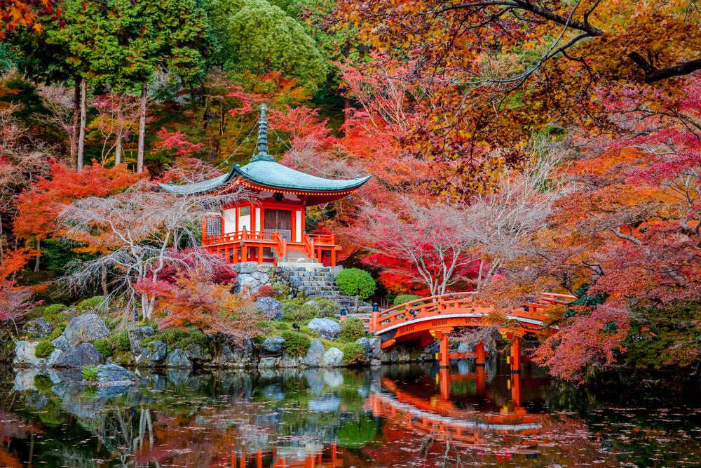 Shutterstock 142819897 xepb2k