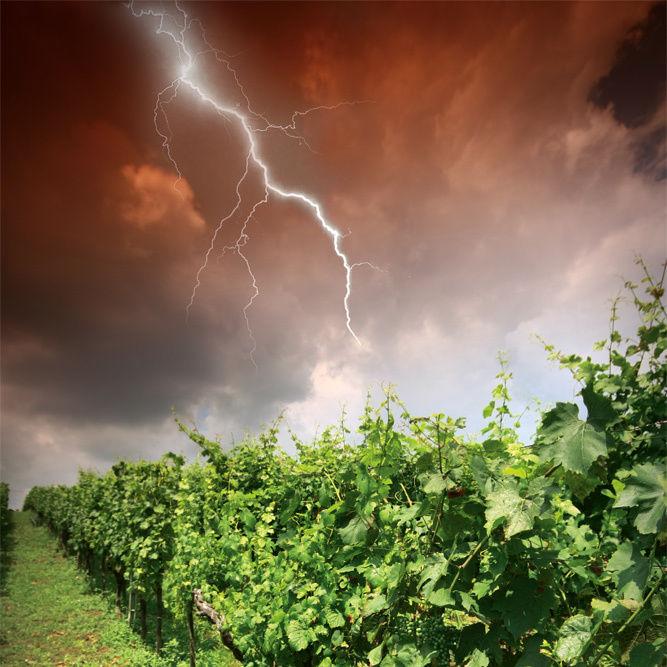 1012 bigblow storm ne4v5f