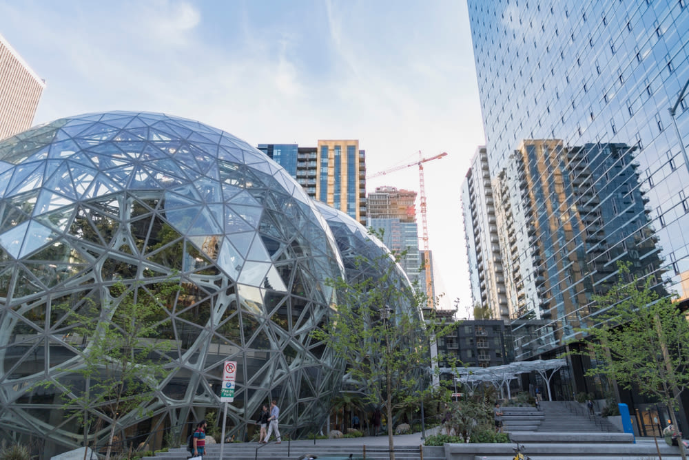 Amazon Spheres with crane in background