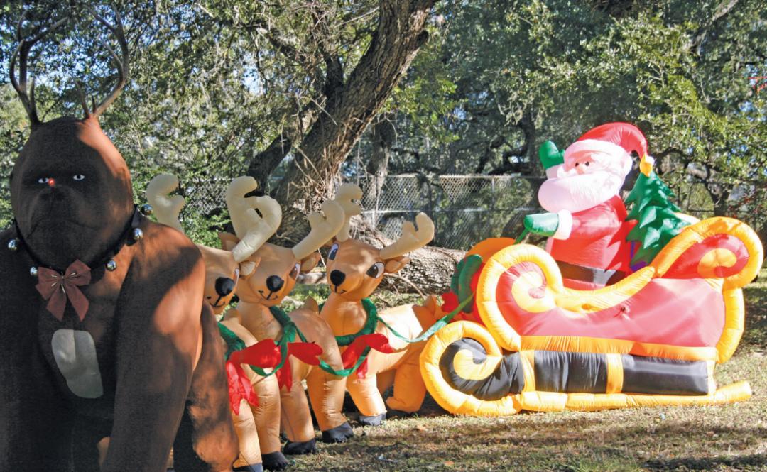 Monkey Business in La Grange   Houstonia