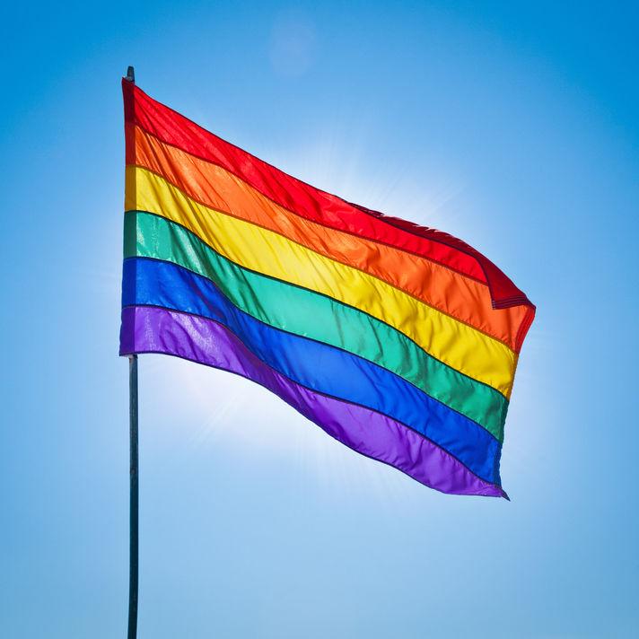 Gay pride alexander demyanenko ggnudg