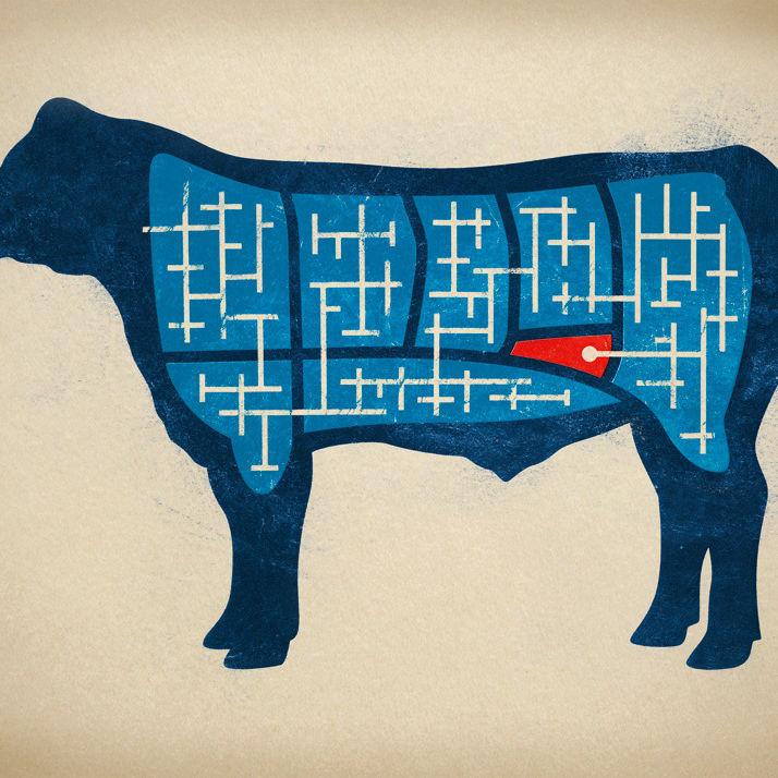 03 085 savor bavette steak zcxqy3