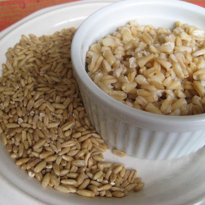6.13 oat groats k1zdv1