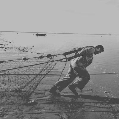 Pomo 0616 seafood narrative featured nbb9qr