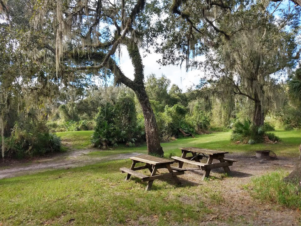A picnic area is the perfect place to break for lunch.