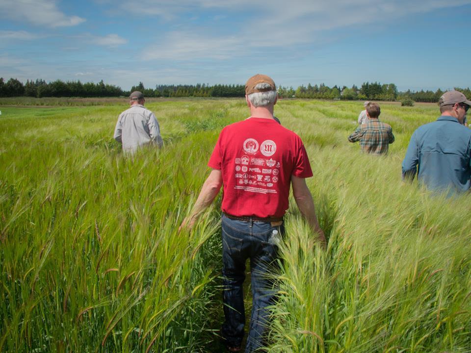 Skagit Valley Malting Is Changing Washington Beer | Seattle Met