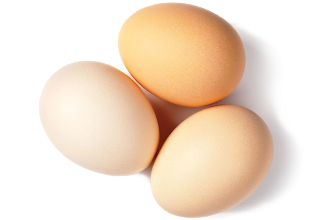 0515 best breakfasts eggs 101 us49ga