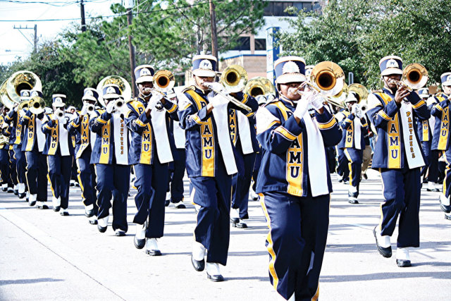 1215 reasons to love winter mlk grande parade marching band dd7imj
