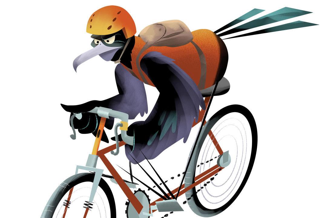 Biking ozao8z