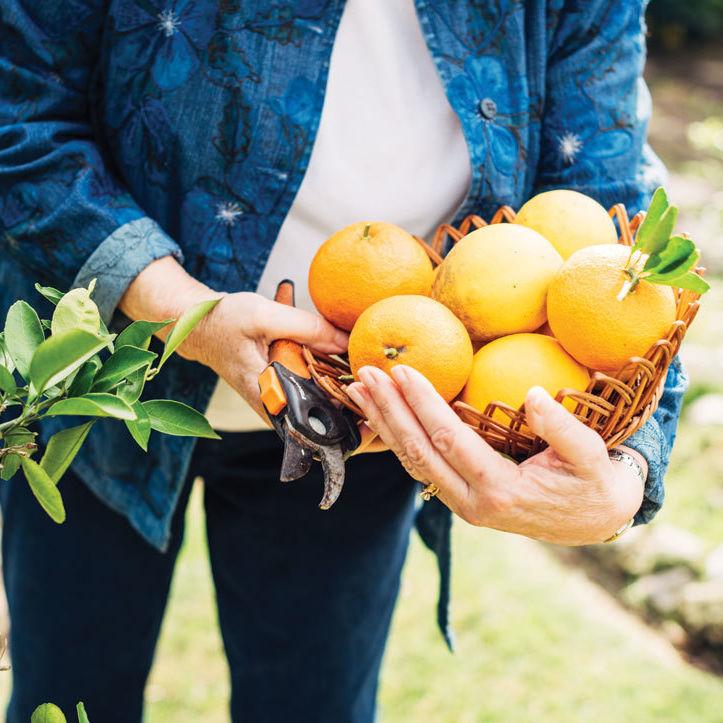 0215 gardening annabelle revis pwtmqt