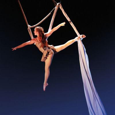 0814 pendulum aerial arts r6ru4r