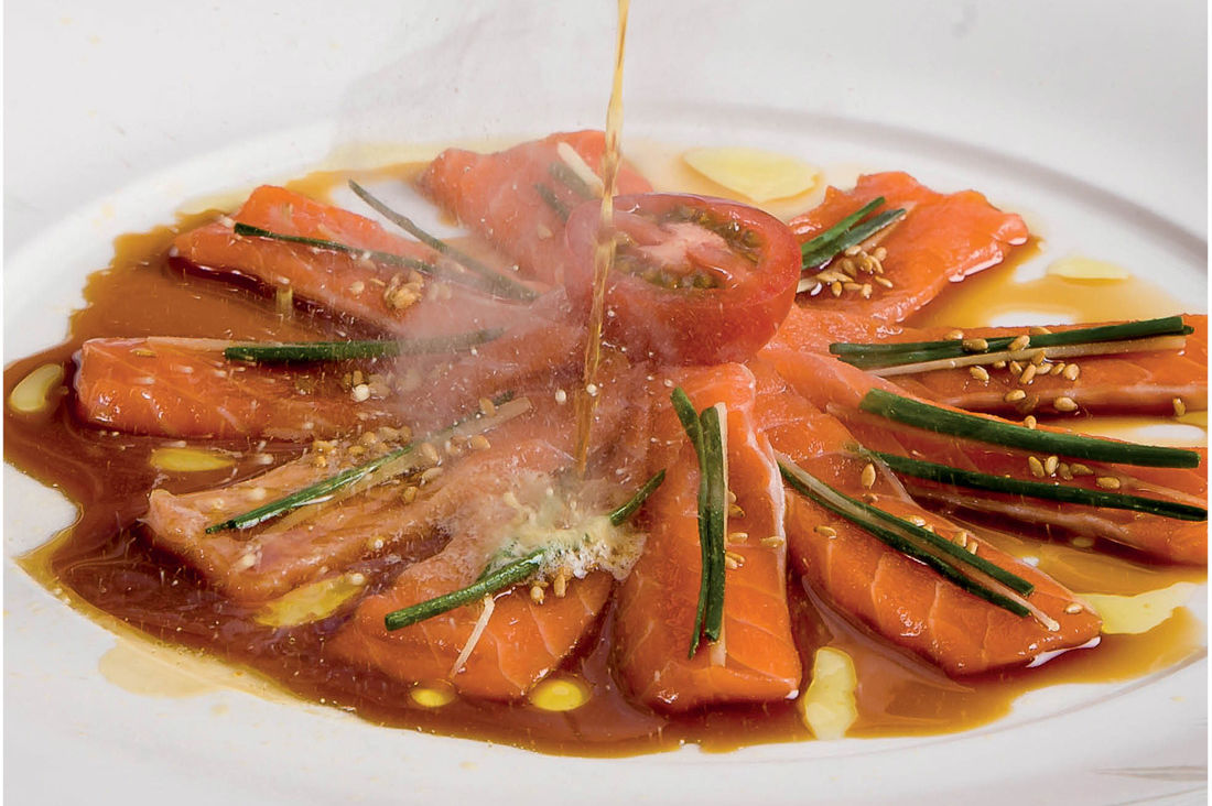1115 dish story salmon tea nr67mw