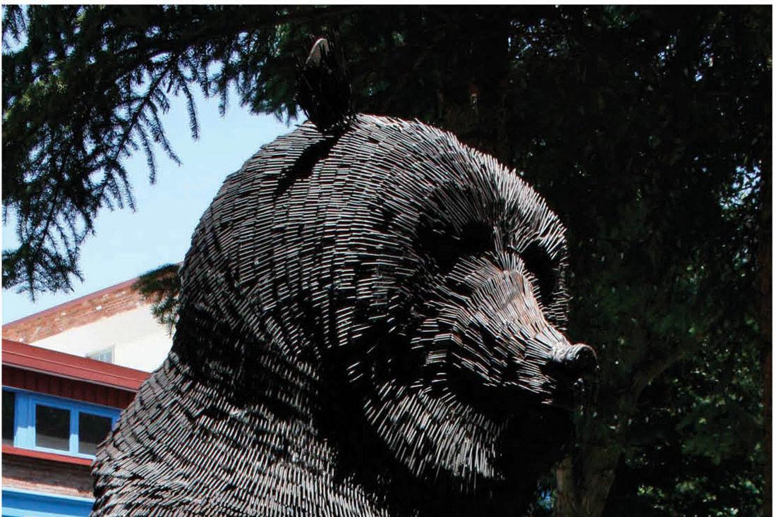1115 bear witness main ngassj