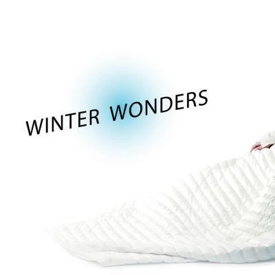 1115 winter wonders main fzglmu