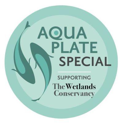 1212 aqua plate special wa9ail