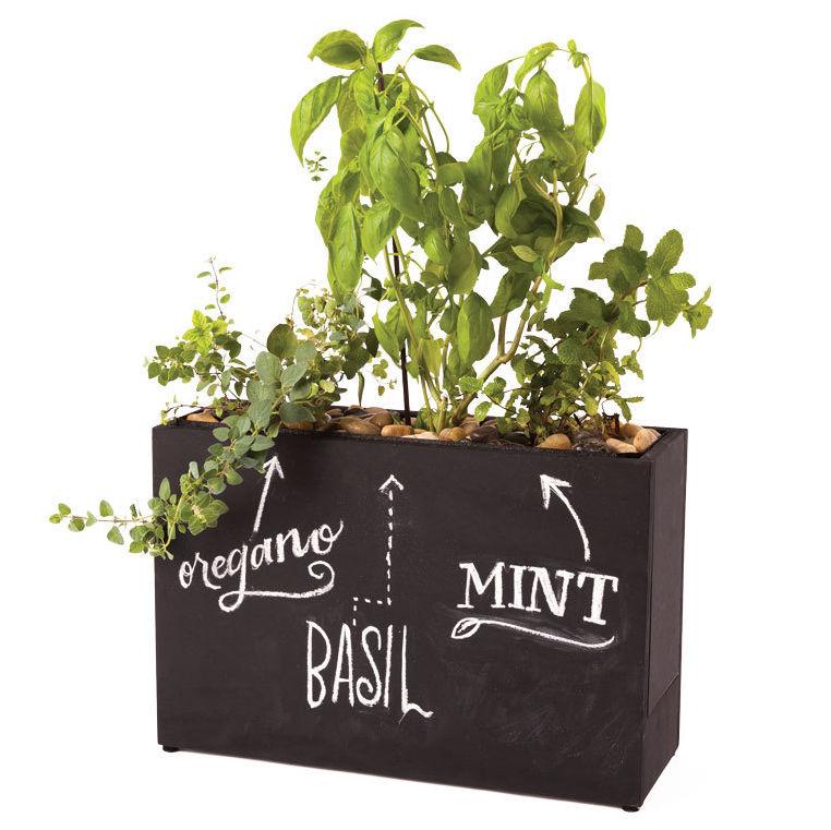 0215 gardening gear hydroponic herb garden zpippu