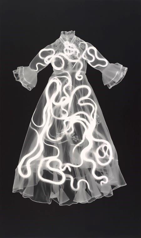Ringling phantom bodies exhibit y5i5jh