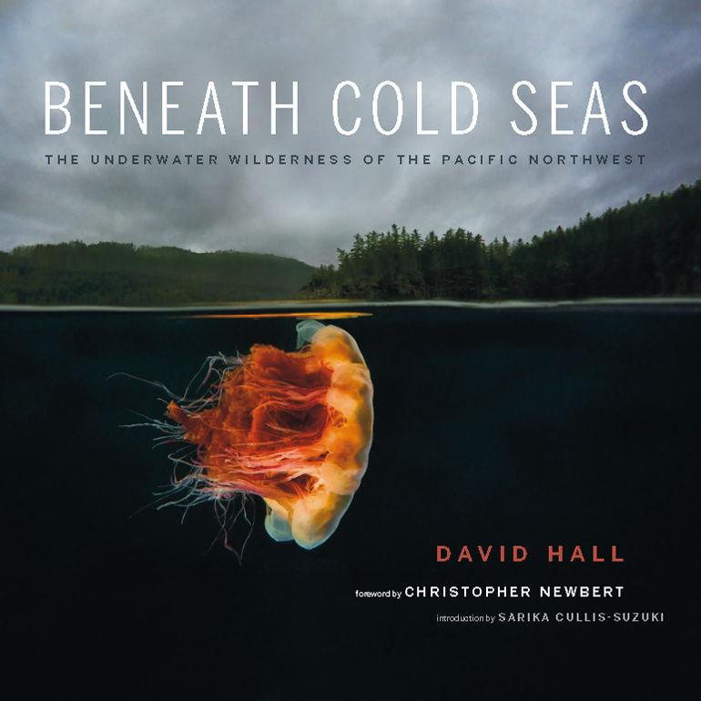 Beneath cold seas  david hall  cover vwxiji