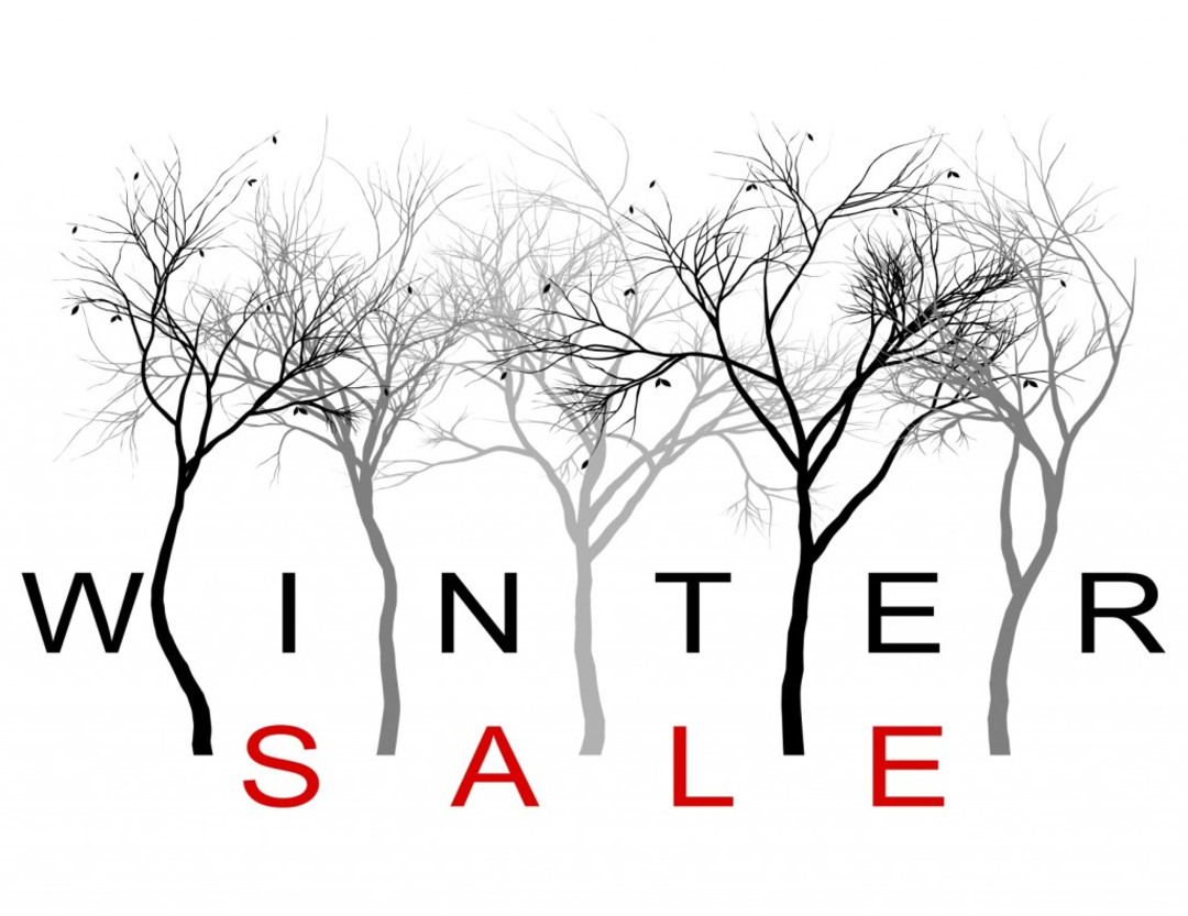 Image result for winter sales