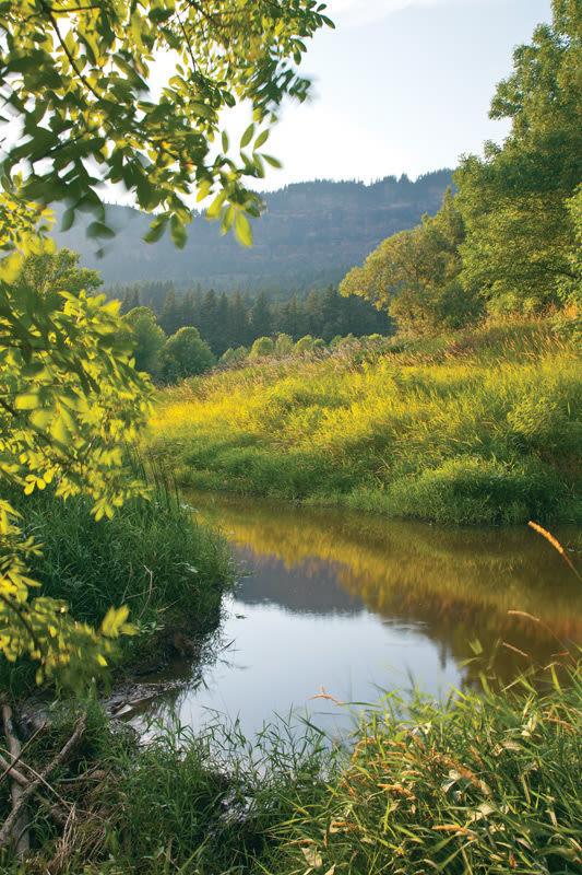 Shire creek uy8zb7
