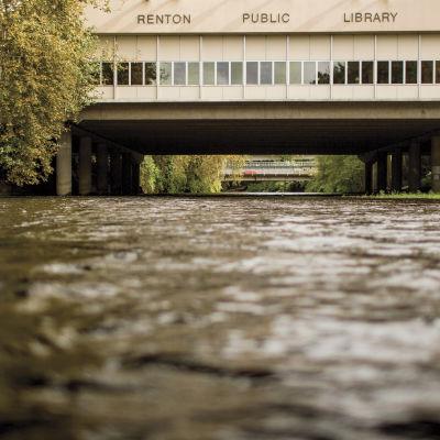 1113 renton public library jhqona