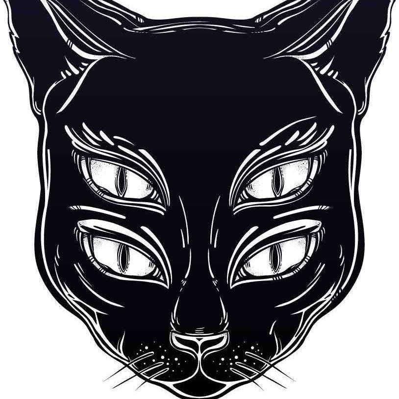 Blackcat3 vvze1y