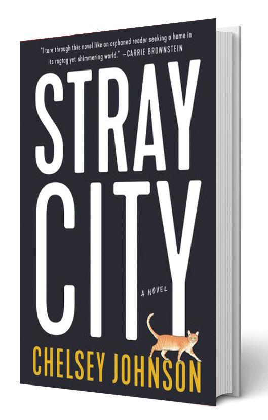 0518 arts essentials stray city rtzdvv