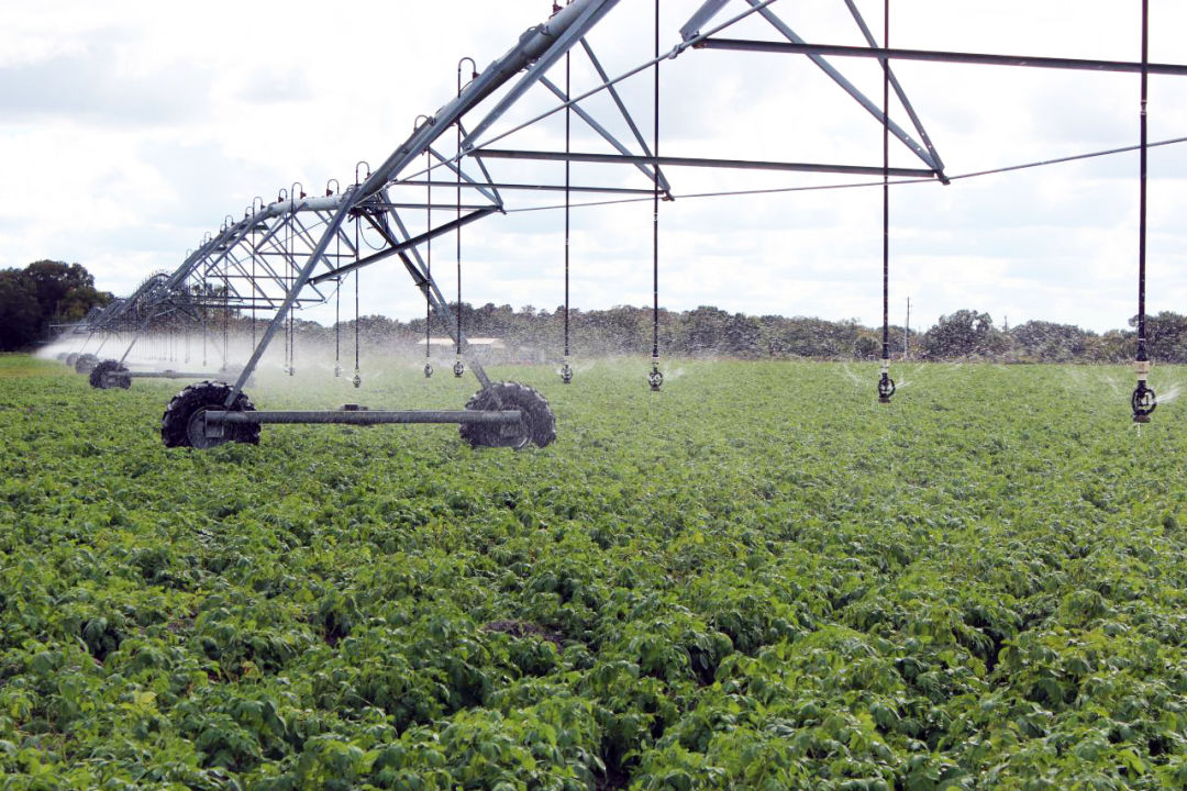 Jones Potato Farm uses tools like center-pivot irrigation to save water, manage fertilizer use, and reduce nutrient runoff.