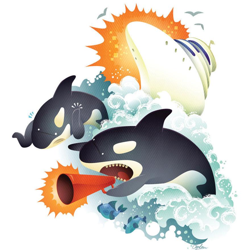 Whales ddwheo