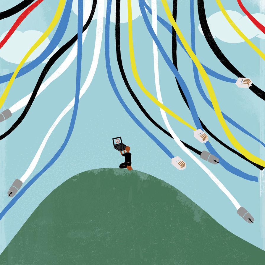 Beacon hill illustration ee8rib