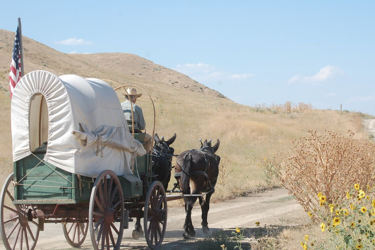 a female pioneer on the oregon trail Women on the american frontier all through the 19th century, women played a very limited and specific role in society their main jobs revolved around the house and the raising of children, while the man's job was breadwinning.