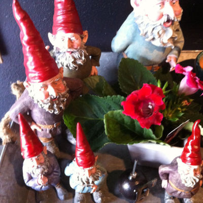 Gnomes at digs zmcozw