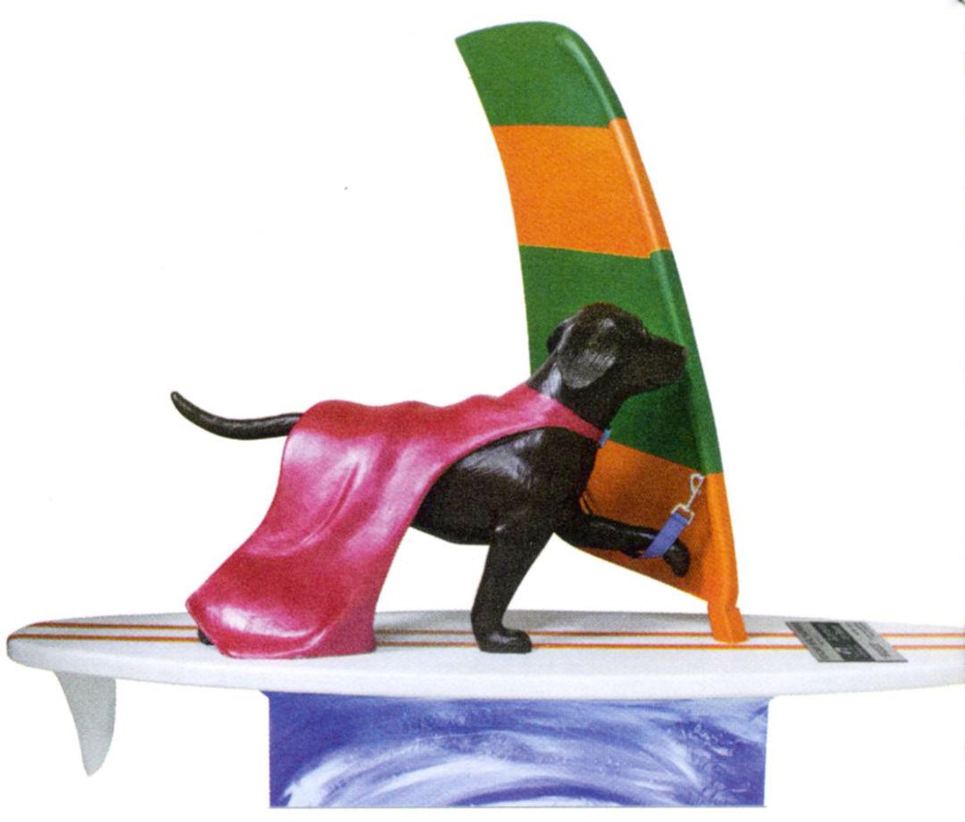 Dog080 incddk