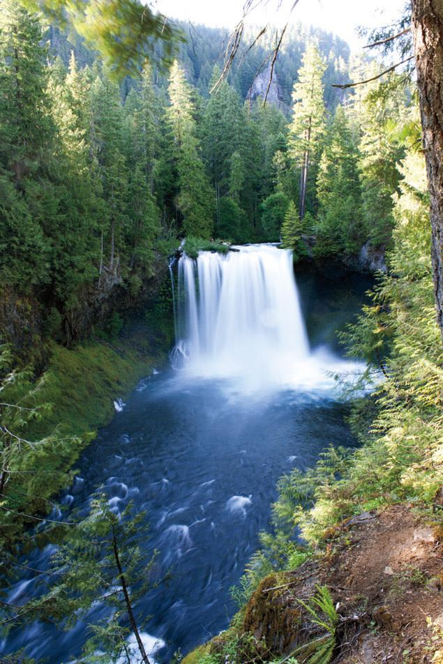 Koosah falls vhoame