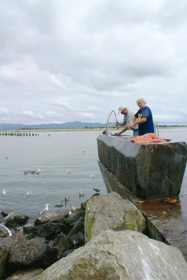 0711 pg112 confluence fishclean i1bdiy