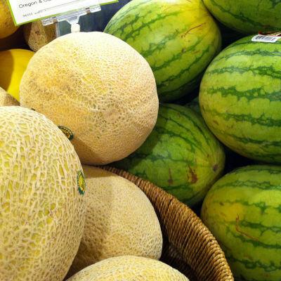 Melons vepgd9