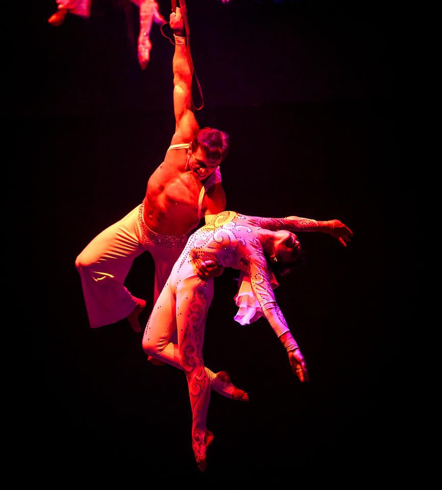 Circus sarasota dolly rafael gmcaqu