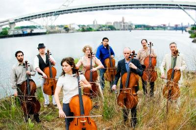 11 13 cello xtgexq