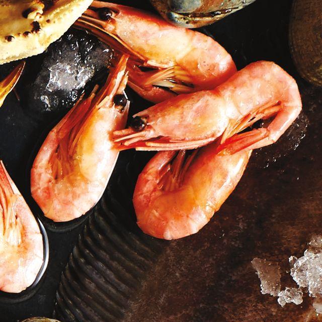 Shrimp gcnww2