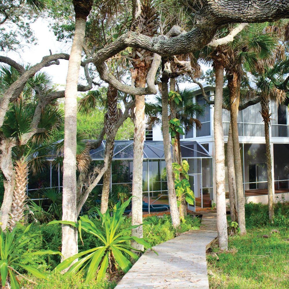 Palmhouse jzrsfd