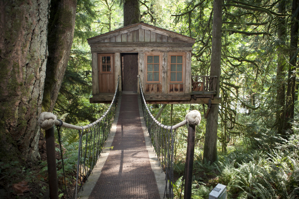 Tree House Retreats For The Perfect Cascadian Summer Getaway - Group guys build epic treehouse gaming
