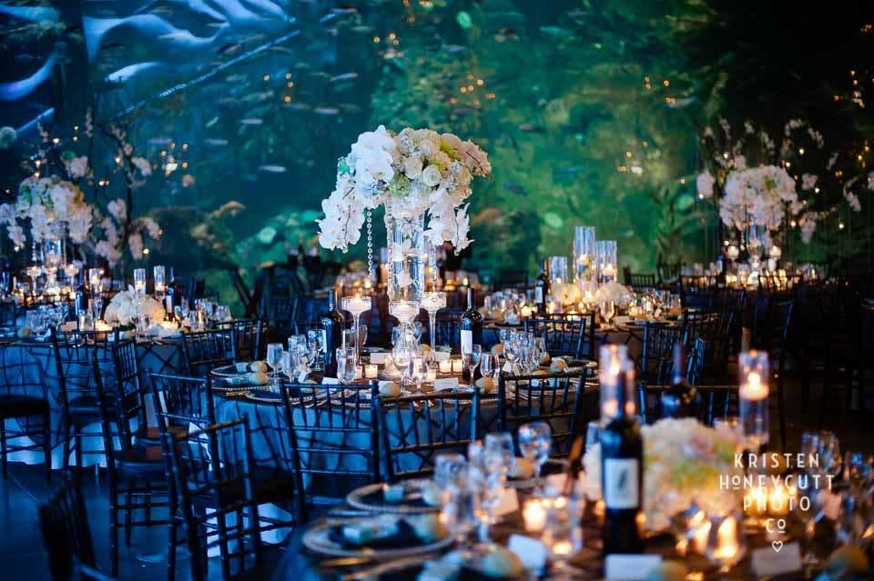 Seattle Aquarium Wedding Vendors Pacific Northwest Weddings