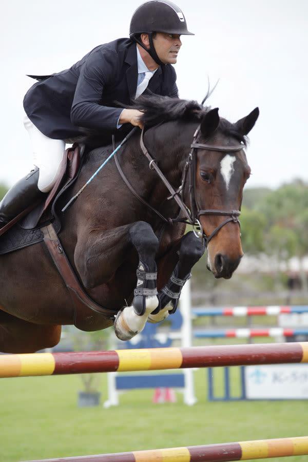 Venice S Fox Lea Farm Has Become An Equestrian Mecca