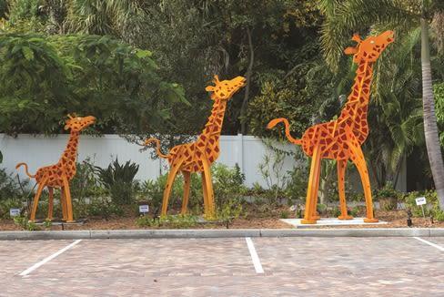 Giraffes fudxeo