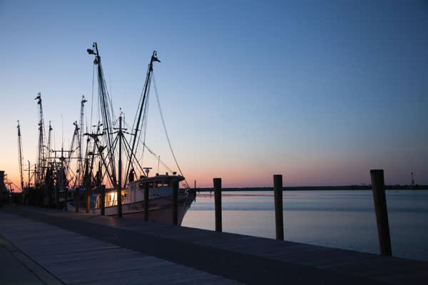 Apalach oysters jtt1ew