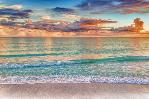Beach1 oucgfp