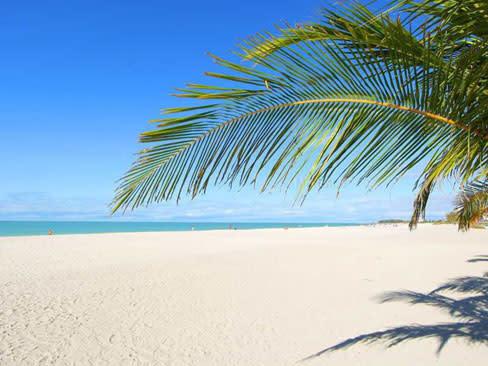 Beach nmjxqm