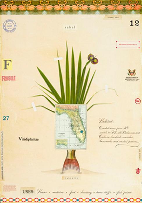 Florida plant vy7l8n